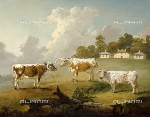 HIP-S-000267-2753 - Three Long-horned Cattle at Kenwood', 1797. Painting from Kenwood House, London. From the The Iveagh Bequest - Historic England Archive / Heritage Images /Alinari Archives, Florence