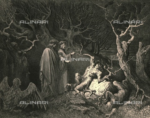 "HIP-S-000270-9329 - ""and his trunk shouted"" Why are you crashing me? "": Dante and Virgil meet Pier della Vigna, Divine Comedy, Inferno - canto XIII, v.33. Engraving by Gustave Doré, published by Cassell, Petter and Galpin, c.1890. - Heritage Images /Alinari Archives, Florence, The Print Collector"
