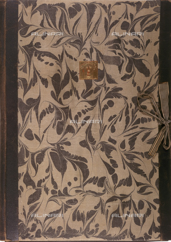 IMA-F-621192-0000 - Plant motif, leather printed by a drawing of Gustav Klimt (1862-1918). On the front: Pallas Athena, logo designed for the Vienna Secession - Austrian Archives / Imagno/Alinari Archives