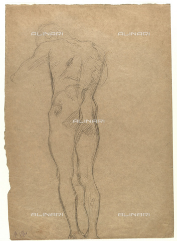 IMA-F-622264-0000 - Figure naked shoulders male, chalk on paper, Gustav Klimt (1862-1918), Wien Museum, Vienna - Wien Museum / Imagno/Alinari Archives