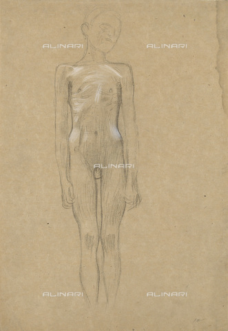 IMA-F-622312-0000 - Naked boy standing, studio for Medizin, pencil on paper, Gustav Klimt (1862-1918), Wien Museum, Vienna - Wien Museum / Imagno/Alinari Archives