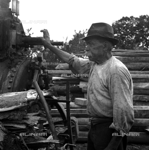 LAA-F-000284-0000 - Elderly worker shown in profile next to a machine in the sawmill - Data dello scatto: 1942 -1950 ca. - Archivi Alinari, Firenze