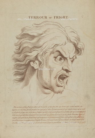 LCA-F-005315-0000 - Fright, engraving, unknown artist of the second half of the eighteenth century after Charles Le Brun (1619-1690) - Quint Lox Limited / Liszt Collection/Alinari Archives