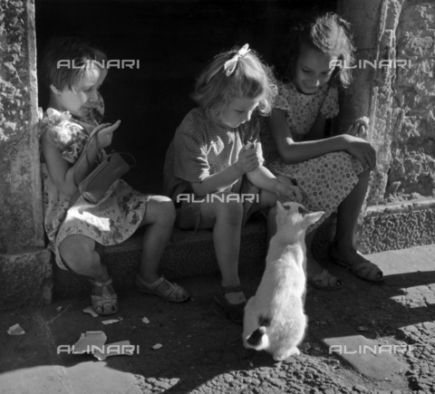 "LFA-F-000085-0000 - ""St. Barnaba, Venice, The Kitten"" Three young girls sitting on a step, play with a friendly kitten"