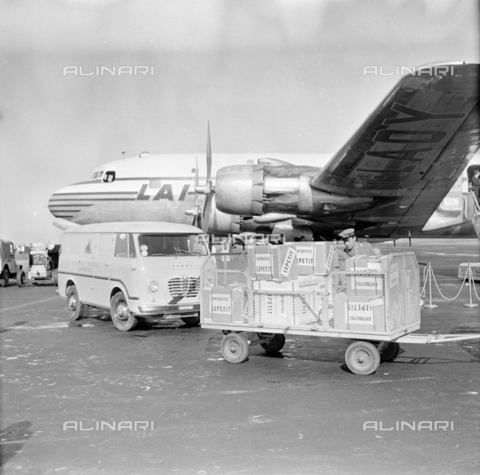 LLA-S-00X293-A007 - The pharmaceutical company Lepetit sends antibiotics from Ciampino airport to Hungary - Data dello scatto: 29/10/1955 - Luigi Leoni Archive / Alinari Archives