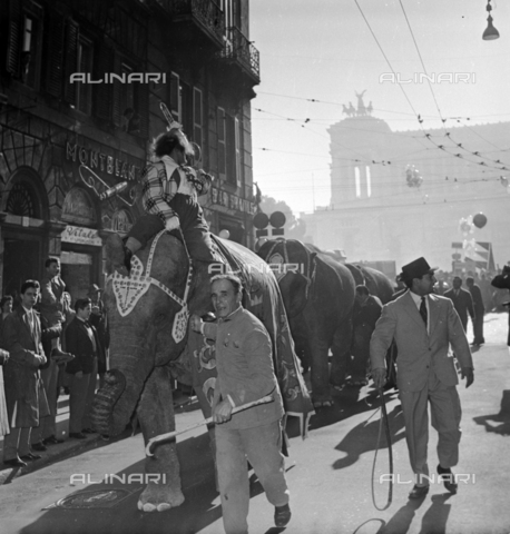 LLA-S-00X351-0001 - Elephants of the Togni circus parade in Via del Corso in Rome - Data dello scatto: 06/01/1957 - Luigi Leoni Archive / Alinari Archives