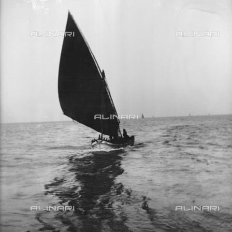 MFA-S-0SN443-000S - Sailing boat - Data dello scatto: 1900 ca. - Archivi Alinari, Firenze