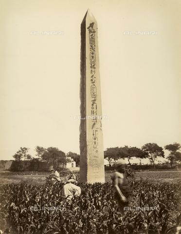 MFC-A-004677-0025 - The obelisk of Senusert I, in the ancient city of Heliopolis, in Egypt - Data dello scatto: 1870-1880 ca. - Archivi Alinari, Firenze