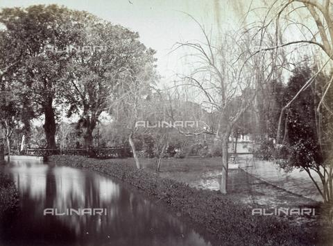 MFC-A-004677-0039 - Pittoresco angolo dei giardini di Gezira al Cairo - Data dello scatto: 1870-1880 ca. - Raccolte Museali Fratelli Alinari (RMFA)-collezione Malandrini, Firenze
