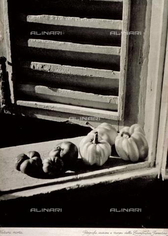 MFC-F-002343-0000 - Studio di natura morta: sul davanzale di una finestra in primo piano sono ordinati pomodori e peperoni - Data dello scatto: 1930-1950 ca. - Archivi Alinari, Firenze