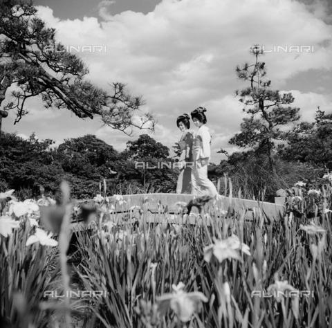 MFV-F-JBN303-0000 - Due gheisha passano sopra un ponticino nel giardino degli Iris alle porte di Tokyo - Data dello scatto: 1953 ca. - Fosco Maraini/Proprietà Gabinetto Vieusseux©Fratelli Alinari