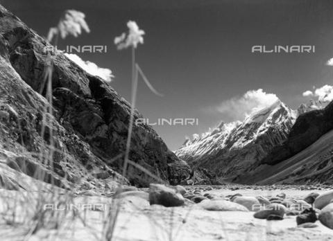 MFV-F-M00029-0000 - La valle del Braldu che porta al K2, 8611 m (Karakorum, Gasherbrum, spedizione italiana CAI) - Data dello scatto: 8 giugno 1958 - Fosco Maraini/Proprietà Gabinetto Vieusseux©Fratelli Alinari