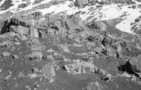 MFV-S-CAI021-0561 - CAI expedition to Gasherbrum IV in the Karakorum massif: Moraines of the Baltoro Glacier - Date of photography: 30/04/1958-03/09/1958 - Fosco Maraini/Gabinetto Vieusseux Property©Fratelli Alinari