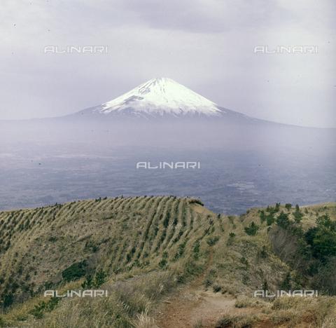 MFV-S-JPN037-0009 - Mount Fuji with the snow-capped peak - Date of photography: 03/04/1963 - Fosco Maraini/Gabinetto Vieusseux Property©Fratelli Alinari
