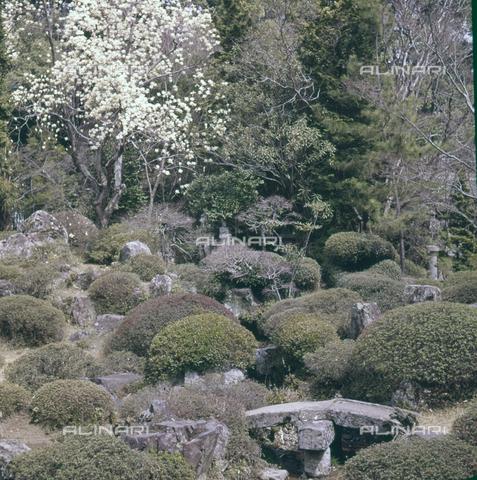 MFV-S-JPN040-0004 - Erin-ji temple garden in Kofu - Date of photography: 1963 - Fosco Maraini/Gabinetto Vieusseux Property©Fratelli Alinari