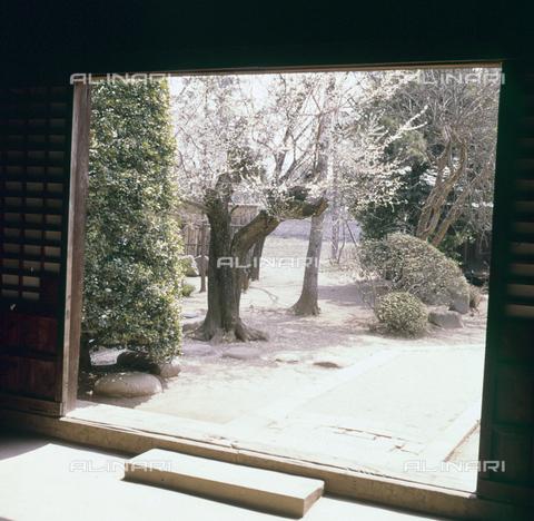 MFV-S-JPN040-0009 - Erin-ji temple garden in Kofu - Date of photography: 1963 - Fosco Maraini/Gabinetto Vieusseux Property©Fratelli Alinari