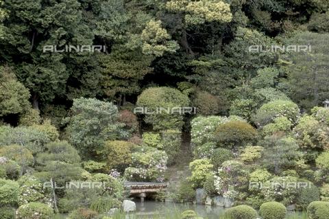 MFV-S-JPN369-0069 - Detail of the garden inside the Chishaku-in temple in Kyoto - Date of photography: 1963-1991 - Fosco Maraini/Gabinetto Vieusseux Property©Fratelli Alinari