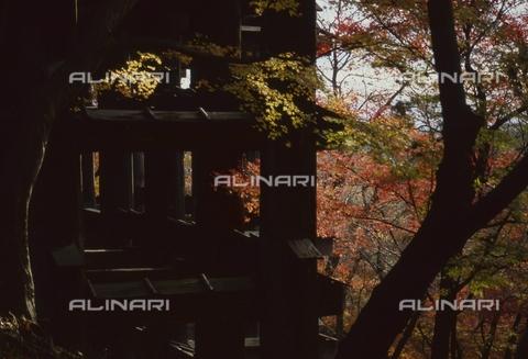 "MFV-S-JPN369-0088 - Kiyomizu-dera Temple (""The Temple of Pure Water""), detail, Kyoto - Date of photography: 11/1987 - Fosco Maraini/Gabinetto Vieusseux Property©Fratelli Alinari"