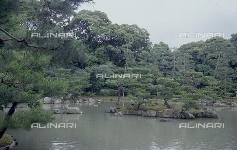 """MFV-S-JPN369-0098 - Tempio di Kinkaku-ji (""""Tempio del padiglione d'oro""""), particolare del giardino, Kyoto - Data dello scatto: 1963-1991 - Fosco Maraini/Proprietà Gabinetto Vieusseux©Fratelli Alinari"""