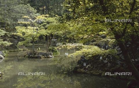 """MFV-S-JPN369-0109 - Particolare del giardino di muschio detto """"Koke-dera"""" all'interno del tempio buddista Saihō-ji, Kyoto - Data dello scatto: 1963-1991 - Fosco Maraini/Proprietà Gabinetto Vieusseux©Fratelli Alinari"""