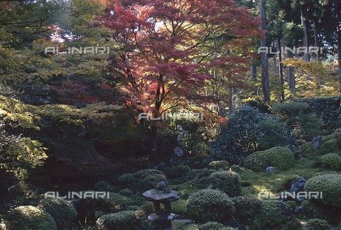MFV-S-JPN369-0120 - Tempio di Sanzen-in, particolare del giardino, Ohara, Kyoto - Data dello scatto: 1963-1991 - Fosco Maraini/Proprietà Gabinetto Vieusseux©Fratelli Alinari