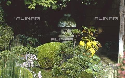 MFV-S-JPN369-0124 - Tempio di Sanzen-in, particolare del giardino, Ohara, Kyoto - Data dello scatto: 1963-1991 - Fosco Maraini/Proprietà Gabinetto Vieusseux©Fratelli Alinari