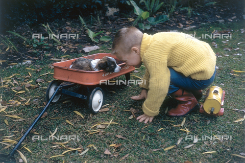 NVQ-S-000520-0065 - Boy with dog; America