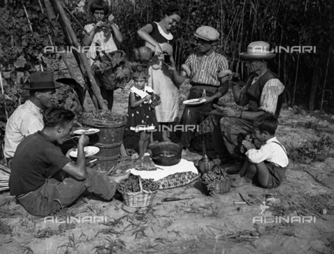NVQ-S-002199-7029 - Snack after the Grape harvest in Forrottoli, Quarrata