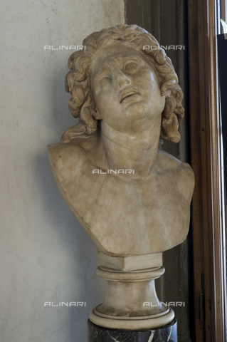 OBN-F-000741-0000 - Dying Alexander, marble, Hellenistic art, Galleria degli Uffizi, Florence - Date of photography: 29/09/2014 - Nicolò Orsi Battaglini/Alinari Archives, Florence, Courtesy of the Ministry of Heritage and Cultural Activities