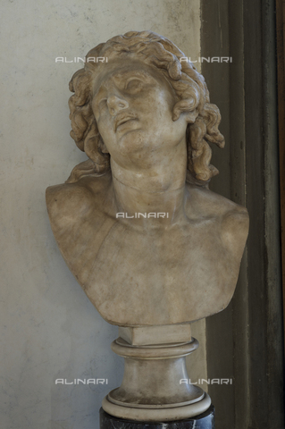 OBN-F-000742-0000 - Dying Alexander, marble, Hellenistic art, Galleria degli Uffizi, Florence - Date of photography: 29/09/2014 - Nicolò Orsi Battaglini/Alinari Archives, Florence, Courtesy of the Ministry of Heritage and Cultural Activities