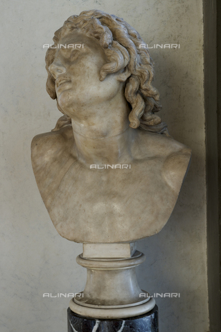 OBN-F-000743-0000 - Dying Alexander, marble, Hellenistic art, Galleria degli Uffizi, Florence - Date of photography: 29/09/2014 - Nicolò Orsi Battaglini/Alinari Archives, Florence, Courtesy of the Ministry of Heritage and Cultural Activities