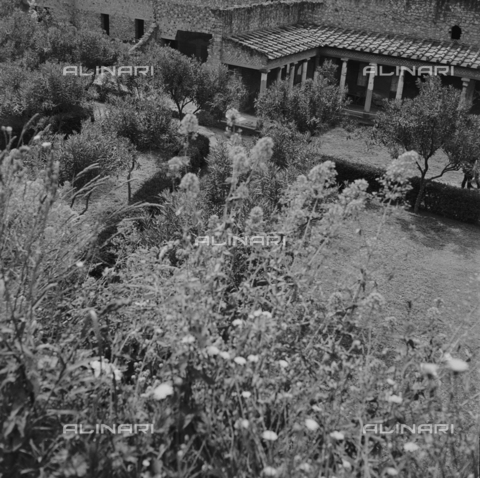 OMD-S-000324-0010 - View of a garden in the historic center of Ascoli Piceno - Date of photography: 1990-2000 - Fratelli Alinari Museum - donation Orioli, Florence
