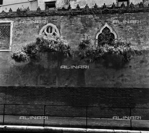 OMD-S-000429-0011 - Wall of a palace in Venice - Date of photography: 25/04-01/05/1991 - Fratelli Alinari Museum - donation Orioli, Florence