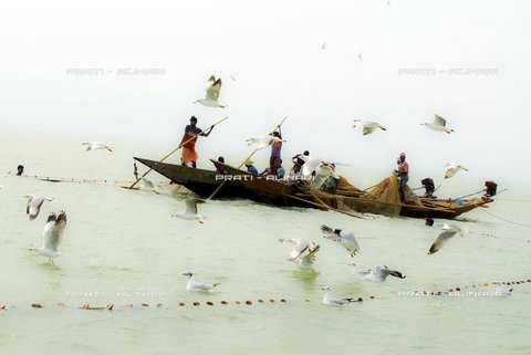 PAA-F-002209-0000 - India, Orissa, Chilika lake, fishermen