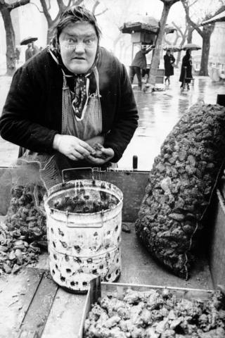 """PAQ-F-000744-0000 - """"Musolera"""" - Data dello scatto: 1970-1979 - Archivi Alinari, Firenze"""