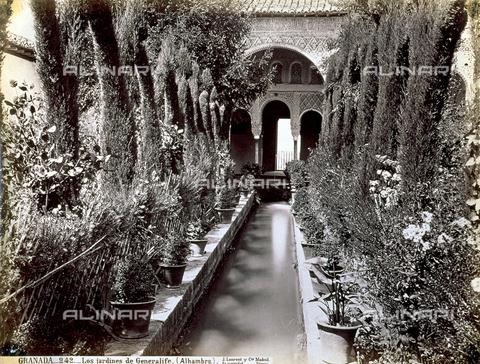 PDC-A-004568-0076 - Scorcio dei giardini della Reggia di Generalife, a Granada - Data dello scatto: 1870-1880 ca. - Archivi Alinari, Firenze