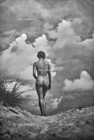 PDC-A-004668-0001 - Female back nude - Date of photography: 1935-1938 - Fratelli Alinari Museum Collections-Palazzoli Collection, Florence