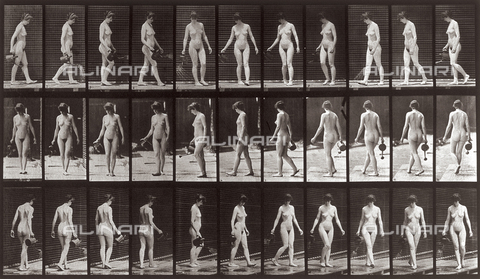 "PDC-A-004694-0051 - ""Animal Locomotion"" (plate 51): sequence of nude woman walking with a watering can in her hand - Data dello scatto: 1887 - Archivi Alinari, Firenze"
