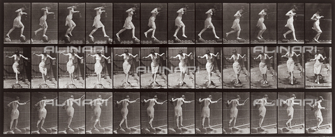 "PDC-A-004694-0175 - ""Animal Locomotion"" (plate 175): sequence of woman walking on stones - Data dello scatto: 1887 - Archivi Alinari, Firenze"