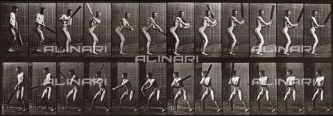 "PDC-A-004694-0293 - ""Animal Locomotion"" (plate 293): sequence of a nude man with a cricket bat - Data dello scatto: 1887 - Archivi Alinari, Firenze"