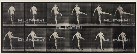 "PDC-A-004694-0369 - ""Animal Locomotion"" (plate 369): sequence with nude man moving his right leg - Data dello scatto: 1887 - Archivi Alinari, Firenze"