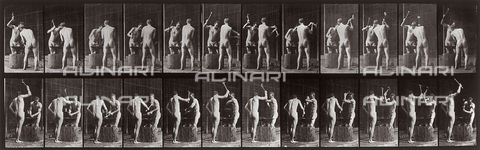 "PDC-A-004694-0375 - ""Animal Locomotion"" (plate 375): sequence with two nude men working with an anvil and hammer - Data dello scatto: 1887 - Archivi Alinari, Firenze"