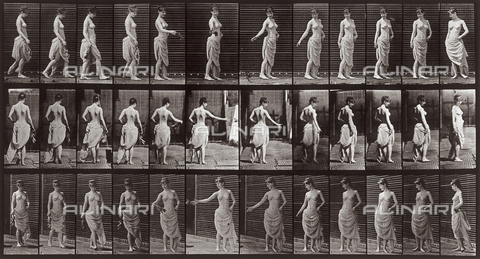 "PDC-A-004695-0053 - ""Animal Locomotion"" (tav. 53): sequenza di donna che lancia un ramoscello di foglie camminando - Data dello scatto: 1887 - Archivi Alinari, Firenze"