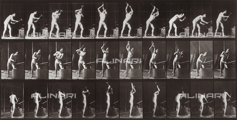 "PDC-A-004695-0378 - ""Animal Locomotion"" (plate 378): sequence with a half-naked man with an anvil and hammer - Data dello scatto: 1887 - Archivi Alinari, Firenze"