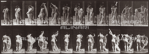 "PDC-A-004695-0428 - ""Animal Locomtion"" (plate 428): sequence with two naked girls moving a drape - Data dello scatto: 1887 - Archivi Alinari, Firenze"