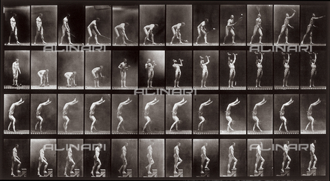 "PDC-A-004695-0488 - ""Animal Locomotion"" (plate 488): sequence with a naked man playing with a tennis racquet, lifting weights, walking on his hands and going up steps - Data dello scatto: 1887 - Archivi Alinari, Firenze"