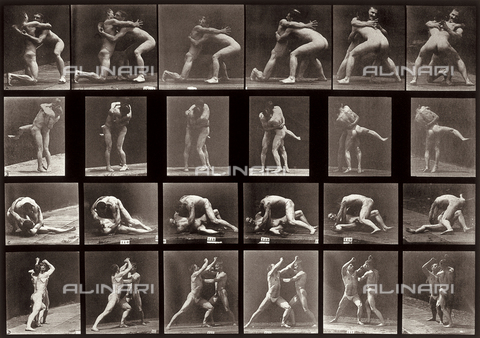 "PDC-A-004695-0520 - ""Animal Locomotion"" (plate 520): sequence with two naked men fighting"