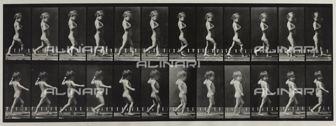 "PDC-A-004695-0540 - ""Animal Locomotion"" (tav. 540): sequenza con bambino nudo che cammina - Data dello scatto: 1887 - Archivi Alinari, Firenze"