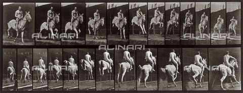 "PDC-A-004695-0646 - ""Animal Locomotion"" (plate 646): sequence with a half naked jockey jumping on horseback"