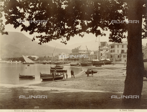 PDC-F-001547-0000 - Bay of Sestri Levante (Italy) photographed from below the foliage of a large tree. A few boats are moored on the shore, others drawn up on the beach with men and children posing next to them - Data dello scatto: 1865 -1885 ca. - Archivi Alinari, Firenze